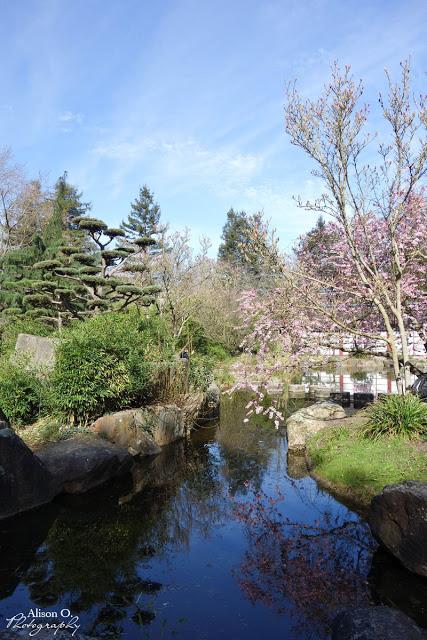 Nantes au printemps - île de versailles