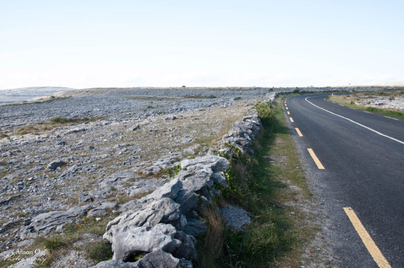 Roadtrip irlandais - Burren